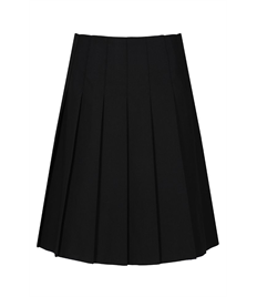 Pleated Skirt, Navy Blue, 28-34